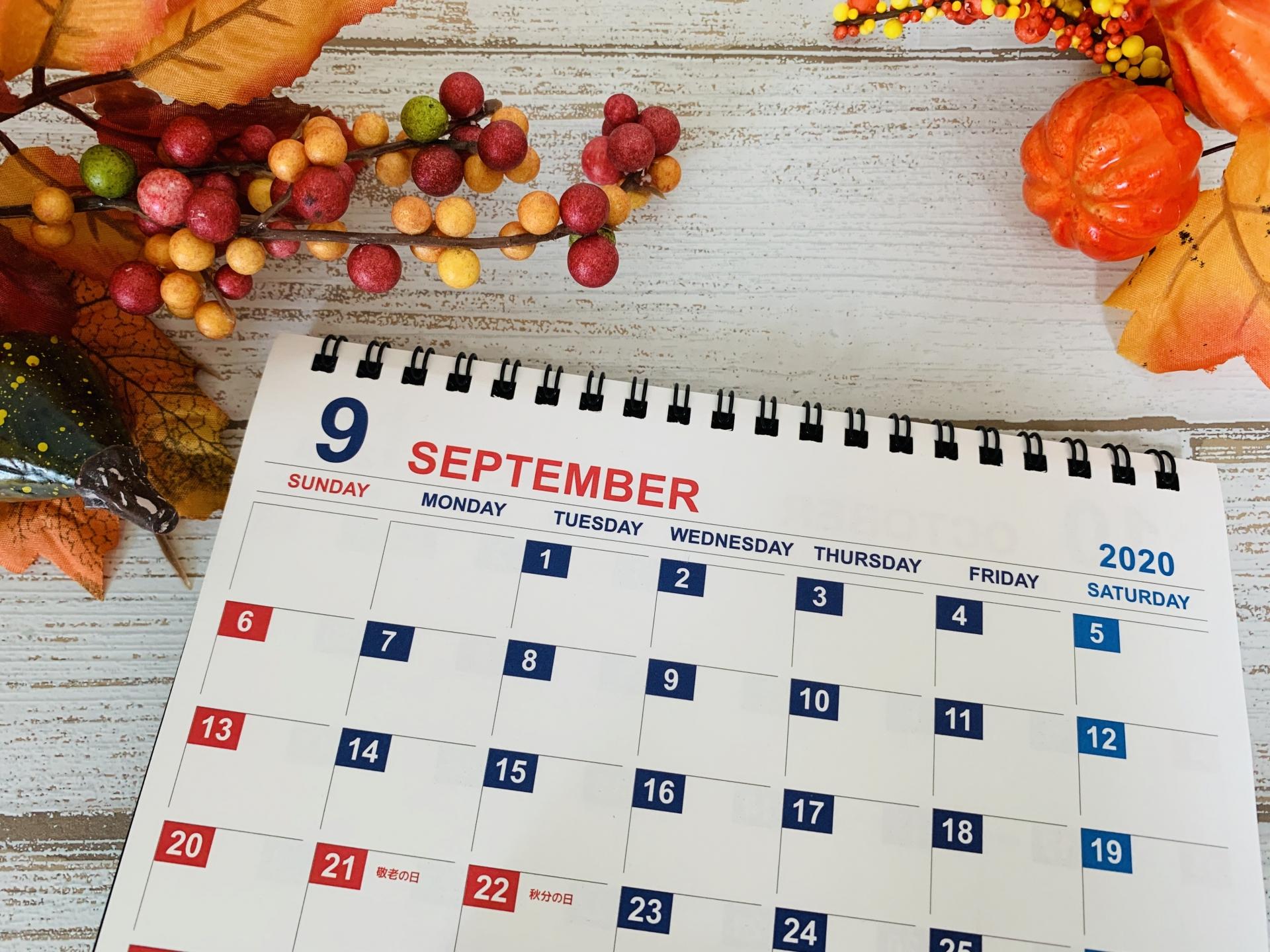 【社内突撃インタビュー企画】複数月カレンダーが経理担当者を救う?